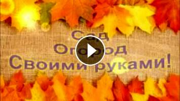 ШОКОЛАДНЫЙ БИСКВИТ - рецепт с пошаговыми фото
